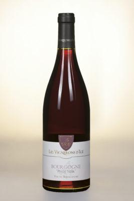 vigneronige_bourgognepinotnoir118